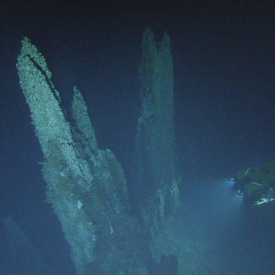 Mothra vents and ROV Hercules