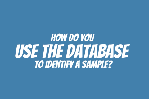 Placecard - How do you use the database to identify a sample?