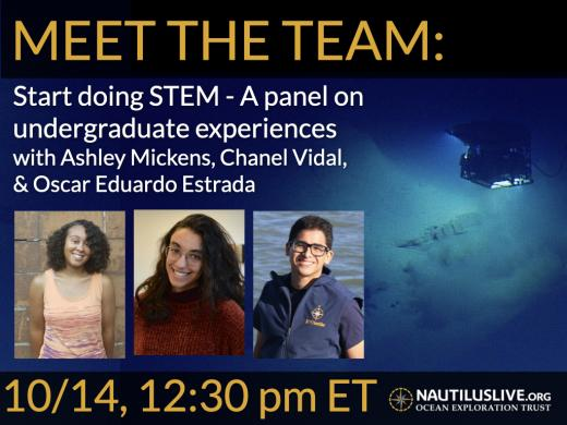 Meet the Team banner says start doing stem a panel on undergraduate experiences.