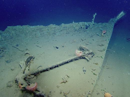 Bow of shipwreck