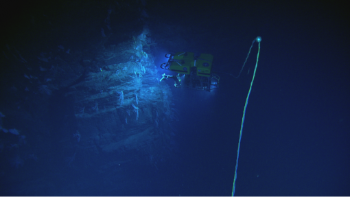 <em>Hercules</em> working on the side of a wall during our deepest dive of the expedition.