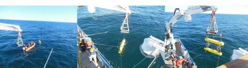 AUV recovery