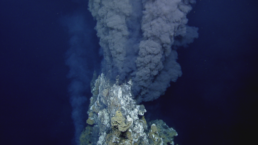 Hydrothermal vent