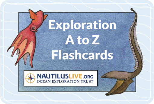 Watercolor painting of dumbo octopus and gulper eel surround text Exploration A to Z Flashcards